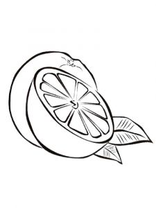 Orange-fruits-coloring-pages-7