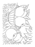 Peach-coloring-pages-2
