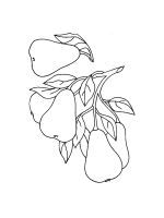 Pear-coloring-pages-20