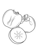 Persimmon-fruits-coloring-pages-5