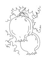 Pomegranate-coloring-pages-11