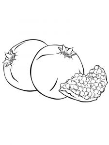 Pomegranate-fruits-coloring-pages-9