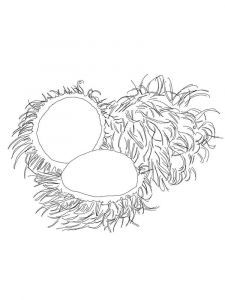 Rambutan-fruits-coloring-pages-5