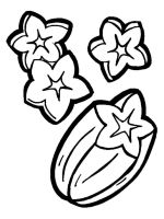 Star-fruits-coloring-pages-4