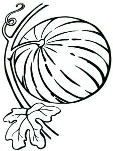 Watermelon-fruits-coloring-pages-5