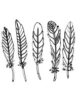 Feathers-coloring-pages-8