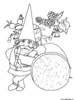 Gnomes-coloring-pages-28