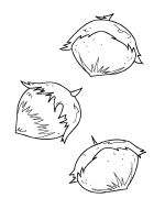 Nuts-coloringpages-17