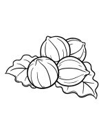 Nuts-coloringpages-21