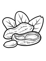 Nuts-coloringpages-23