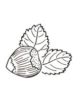 Nuts-coloringpages-3