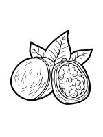 Nuts-coloringpages-4