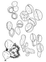 Nuts-coloringpages-7