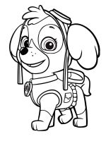 Skye-paw-patrol-coloring-pages-10