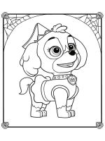 Skye-paw-patrol-coloring-pages-4