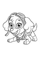 Skye-paw-patrol-coloring-pages-8