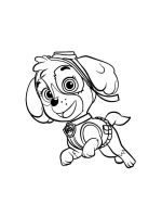 Skye-paw-patrol-coloring-pages-9