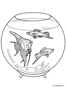 aquarium-coloring-pages-1