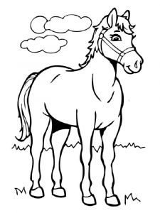 cartoon-horse-coloring-pages-5