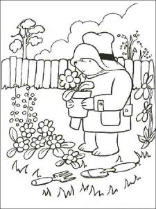 paddington-bear-coloring-pages-6