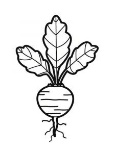 Vegetables-Beet-coloring-page-5