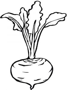 Vegetables-Beet-coloring-page-6