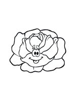 Cabbage-coloring-pages-18