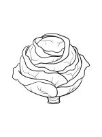 Cabbage-coloring-pages-20