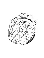 Cabbage-coloring-pages-22