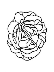 Vegetables-Cabbage-coloring-page-2