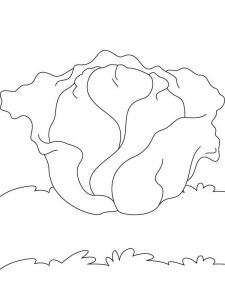 Vegetables-Cabbage-coloring-page-4