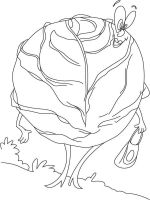 Vegetables-Cabbage-coloring-page-8