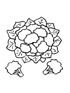 Vegetables-Cauliflower-coloring-page-5