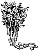 Vegetables-Celery-coloring-page-2