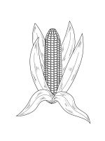 Corn-coloring-pages-29