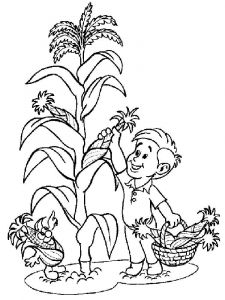 Vegetables-Corn-coloring-page-8