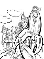 Vegetables-Corn-coloring-page-9