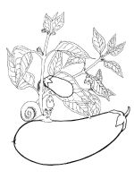 Vegetables-Eggplant-coloring-page-1