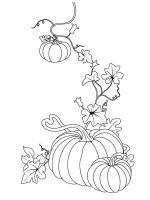 Pumpkin-coloring-pages-19