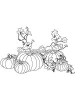 Pumpkin-coloring-pages-25
