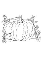 Pumpkin-coloring-pages-28