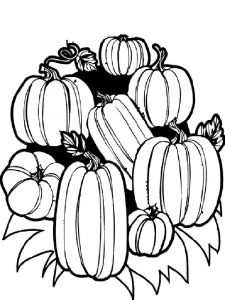 Vegetables-Pumpkin-coloring-page-1