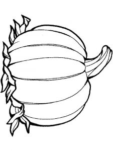Vegetables-Pumpkin-coloring-page-16