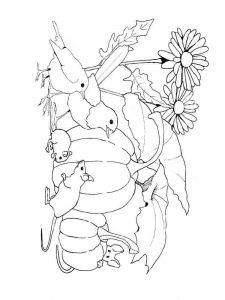 Vegetables-Pumpkin-coloring-page-9