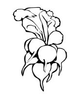 Vegetables-Radish-coloring-page-1