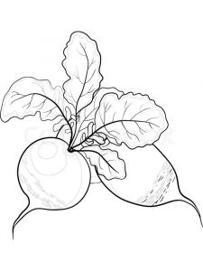 Vegetables-Radish-coloring-page-4