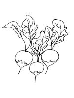 Vegetables-Radish-coloring-page-5