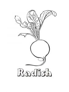 Vegetables-Radish-coloring-page-8