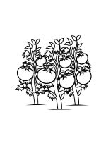 Tomato-coloring-pages-21
