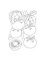 Tomato-coloring-pages-24